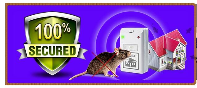 Ультразвуковой отпугиватель грызунов, насекомых, тараканов: преимущества