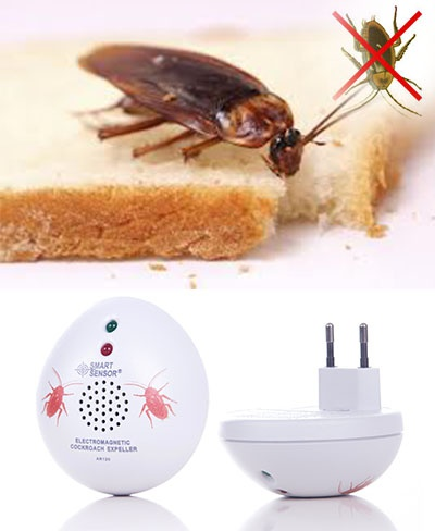 Электромагнитный отпугиватель клопов, тараканов и их сородичей: преимущества