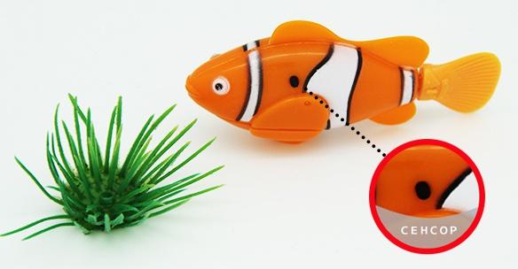 Роборыбка Клоун (robofish) датчик
