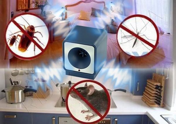 Ультразвуковой отпугиватель тараканов, муравьев, грызунов: преимущества