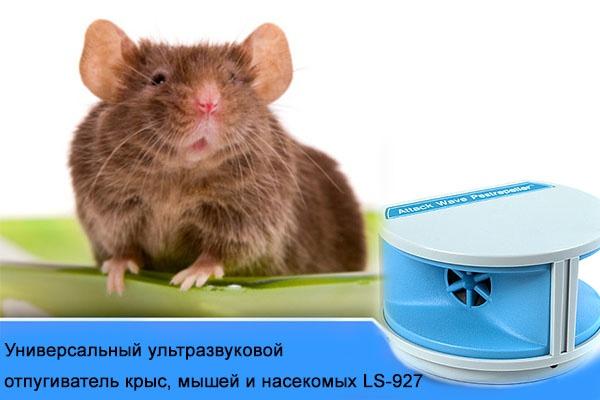 универсальный ультразвуковой отпугиватель мышей и насекомых